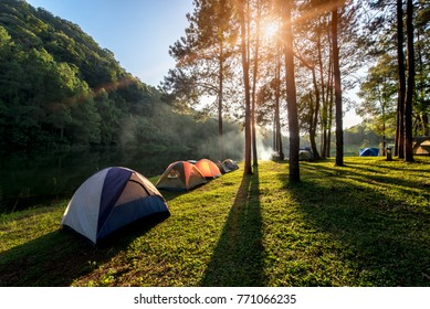 Adventures Camping and tent under the pine forest near water outdoor in morning and sunset at Pang-ung, pine forest park , Mae Hong Son, North of Thailand, forest background. Concept Travel