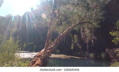 Adventurous hiking trails leading through the beautiful landscape in the Karijini National Park in western Australia