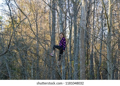An adventurous young girl climbs a tree in a leafless forest