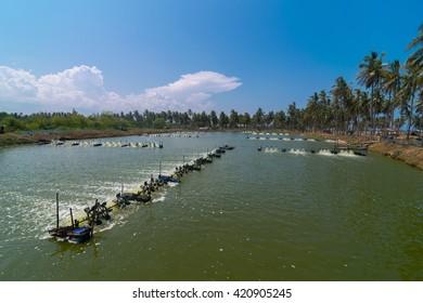 Aerator turbine wheel oxygen fill ins Into lake water. Shrimp farm, Thailand