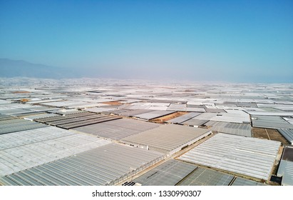 Aerial above drone point of view lot amount polythene plastic exterior greenhouses hothouses where cultivated fruits and vegetables in the Almerimar, province of Almeria, Andalucia or Andalusia, Spain