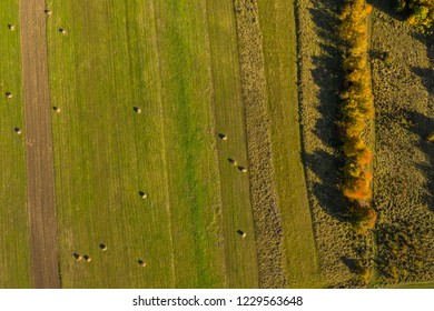 Aerial agricultural pattern view from a drone. Green meadow and hay bales
