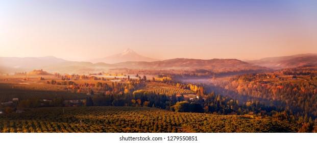 Aerial autumn sunrise pano of Mt Hood, vineyards, orchards, valleys