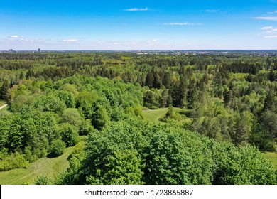 Aerial bird view from above the Perlacher Forst pine forest in Munich. Drone picture of the green spring forest in south Germany