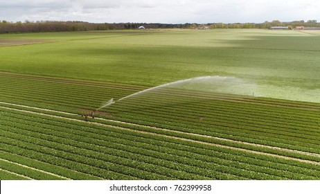 Aerial bird view photo of industrial irrigation sprinkler used to irrigate agricultural crops sprinkler irrigation is method of applying irrigation water which is similar to natural rainfall