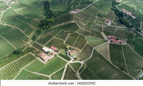 Aerial bird view photo of winemaker landscape showing the field and farms located in Barolo where high quality red wine is produced in the northern Italian region of Piedmont