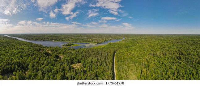 Aerial bird's eye view drone panorama of green boreal coniferous forest, fresh water lakes and rivers and unpaved road winding trough the trees. Summer sunny day, blue sky. Northern Ontario, Canada.