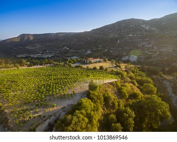 Aerial bird's eye view of Holy monastery of Archangel Michael (Archangelou Michail) in Monagri village, Limassol, Cyprus, an ancient christian religious monument, in vineyards, at sunset, from above.