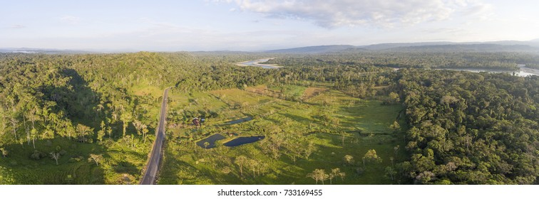 Aerial of a cattle farm cut out of the rainforest in Ecuador.  With fish ponds for raising Tilapia, surrounded by primary rainforest. Napo province in the Ecuadorian Amazon.