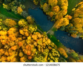 Aerial colorful forest scene in autumn with orange and yellow foliage. Fall city park scenery in Vilnius, Lithuania.