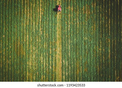Aerial of Corn Maze in New Jersey
