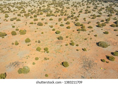 Aerial desert landscape with bushes New Mexico USA