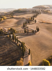 Aerial drone landscape of famous Tuscany hills, Italy. Abstract view of curved serpentine road with cypress alley. Empty agricultural fields in autumn in golden orange colors. San Quirico d'Orcia.
