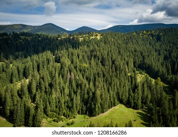 Aerial drone landscape photo of green forest trees growing on high rocky Carpathian mountains under cloudy blue sky.Beautiful view of natural park in Europe.Travel destination for active tourism