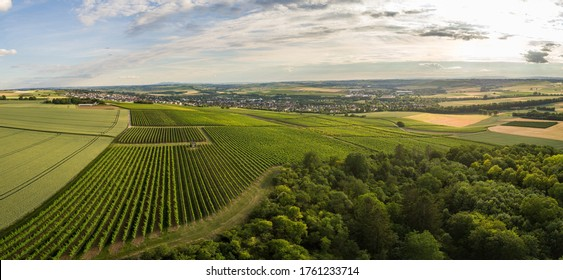Aerial / Drone Panorama of vineyard and agricultural fields in Rheinhessen Germany close to Nieder-Olm