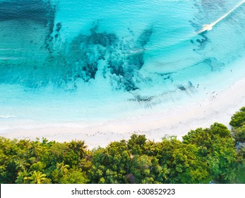 Aerial drone photo - beautiful beach at seychelles