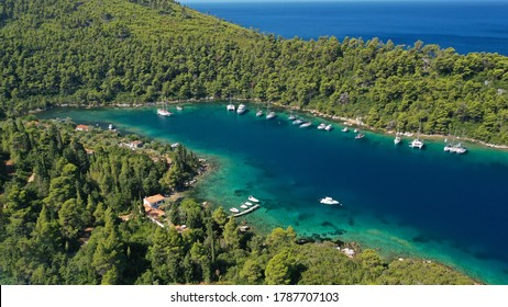 Aerial drone photo of safe small fjord harbour near bay of Panormos a popular yacht and sail boat anchorage with calm sea covered with pine trees, Skopelos island, Sporades, Greece