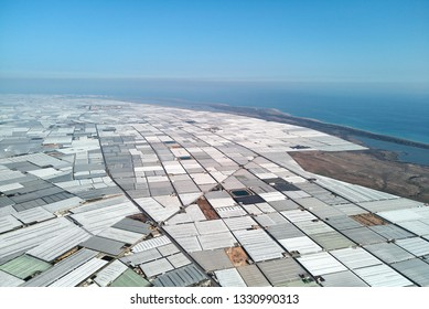 Aerial drone point of view lot of polythene plastic exterior greenhouses hothouses where cultivated fruits and vegetables in Almerimar near the sea, province of Almeria, Andalucia or Andalusia, Spain