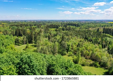 Aerial drone shot from height at the Perlacher Forst, southern Germany near Munich in spring pine forest. Near the Alps