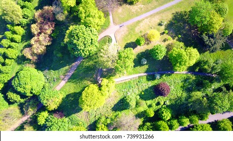 Aerial drone top down photo of beautiful nature in Greenwich park, London, United Kingdom