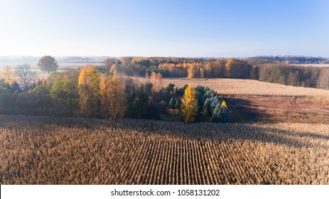 Aerial drone view from above of corn field after harvest, forest and farmland in autumn sunset