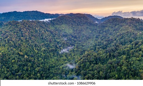 Aerial drone view of clouds hanging over a rainforest at sunset