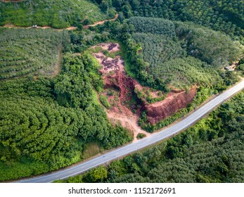 Aerial drone view of deforestation of a tropical rainforest to make room for palm oil and rubber plantations
