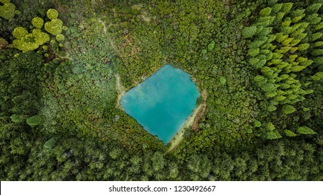 Aerial drone view of natural pond surrounded by pine forest in Madeira island, Portugal.