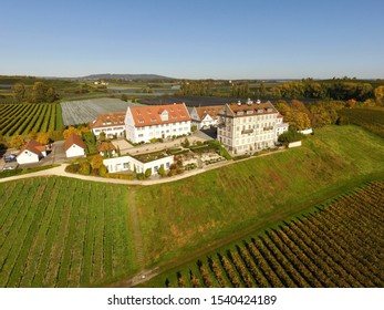 Aerial drone view of the shore with vineyard at German town Kichhof Hagnau at Bodensee. DE-Germany. 15th Oct.2019