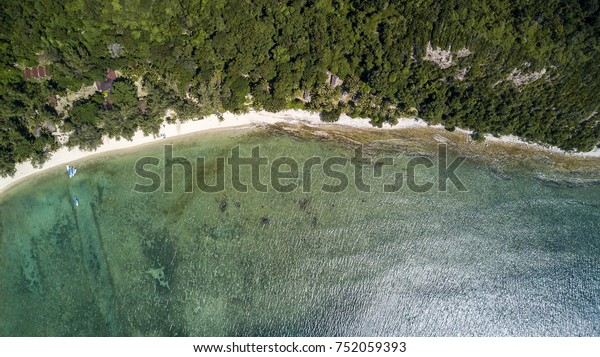 Aerial drone view of a tropical beach with coconut palm trees and white sand of Pulau Sibu in Malaysia