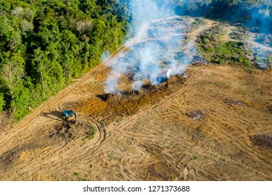 Aerial drone view of tropical rainforest deforestation to clear land for plantations
