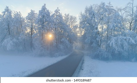 AERIAL Empty road leading into creepy foggy forest. Golden morning sunrays shining trough misty trees in snowy forest at foggy sunrise. Sun rising behind frozen forest wrapped in morning fog and snow.