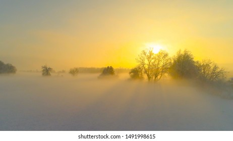 AERIAL Flying over bare frozen treetops on magical misty morning in winter. Stunning foggy landscape with snowy fields and trees at golden sunrise. Sunbeams shining trough icy tree branches at sunset