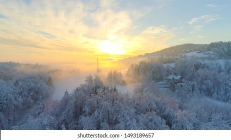 AERIAL: Flying over frozen snowy treetops towards countryside town an misty sunrise. Golden sun rising behind icy mixed forest covered in morning fog and snow in cold winter. Stunning winter landscape