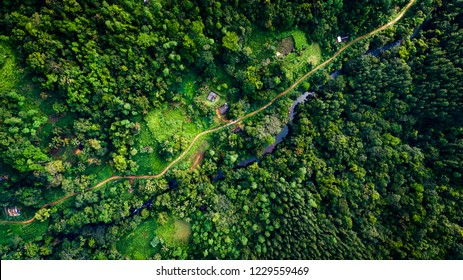 Aerial footage of Sinharaja Rain forest and adjoining border villages