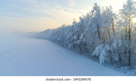 AERIAL Gold morning sunbeams shining trough foggy trees in snowy forest at misty sunrise. Golden sun rising behind frozen forest wrapped in morning fog and snow in cold winter. Stunning winter sunset