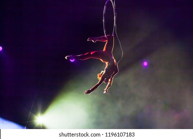 aerial gymnast in the show