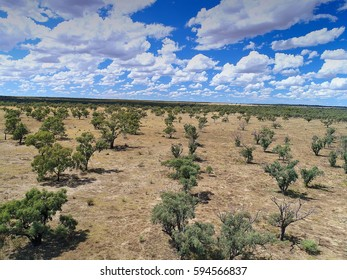 Aerial Helicopter view of dried up and drought stricken Murray River flood plains, lagoon and back water along the river murray darling basin in near Mildura, Australia.