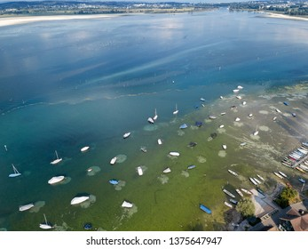 Aerial image by drone of Lake of Constance in summer 2018, which has the least rainfall in Europe since 150 years.