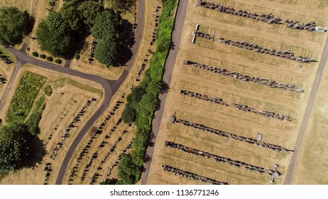 Aerial image over rows of headstones in a cemetery.