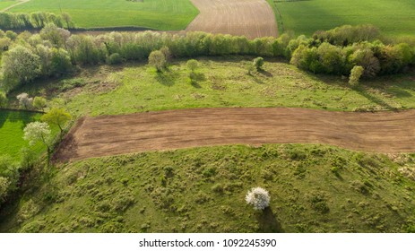 an aerial landscape in the countryside with at the bottom of cultivated fields and a white tree