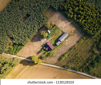 Aerial landscape with house in nature. Calm place in forest.