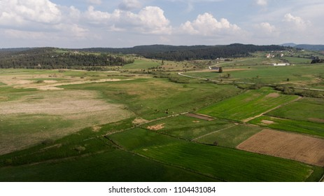 aerial landscape over the crop fields