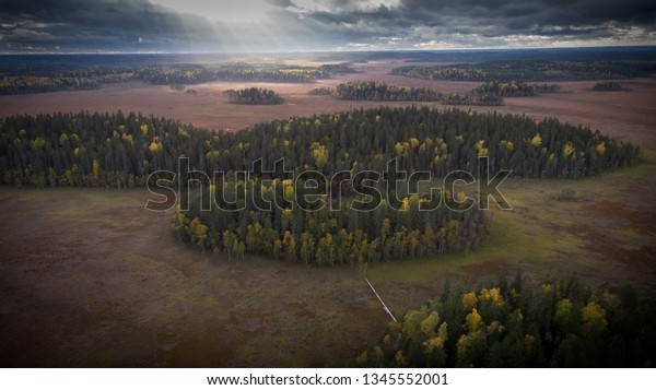 Aerial landscape of Siikaneva wetlands in Orivesi, southern Finland