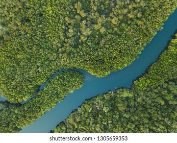 aerial landscape of winding river in forest by drone, beautiful wilderness nature