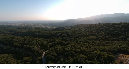 aerial nature view