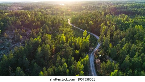 Aerial over a winding forest road in Finland, during sunset - , drone shot