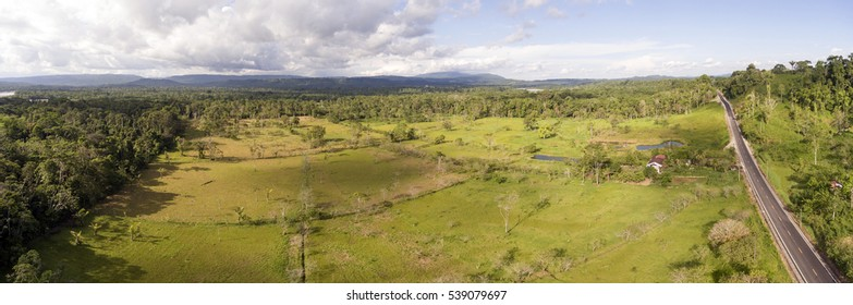 Aerial panorama of a cattle farm cleared from lowland tropical rainforest in Ecuador.