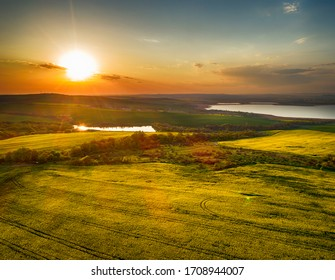 Aerial panorama taken with flying drone with yellow rapeseed field and agricultural land at sunset. Abstract background with stripes and waves. - Image