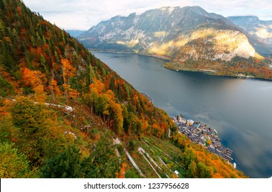 Aerial panorama from a viewpoint above Hallstatt, a peaceful lakeside village in Salzkammergut region of Austria, with colorful autumn forests on the mountains and a path winding on the mountainside